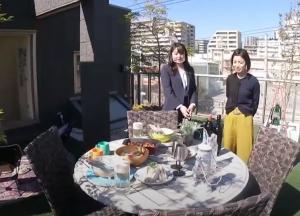 ヘーベルハウス川崎住宅公園